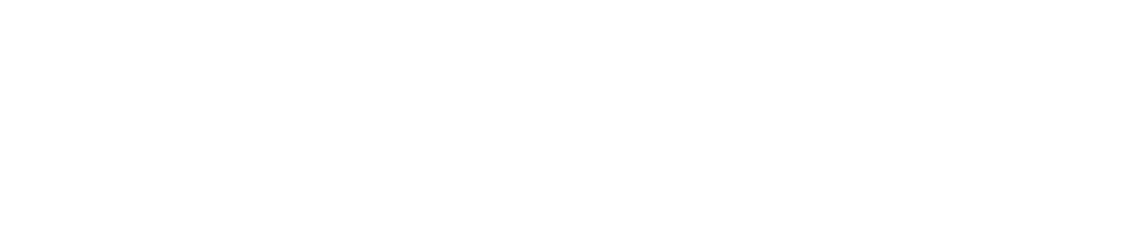 We are Shopify Plus Partners!