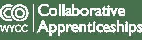 Collaborative-Apprentieceships