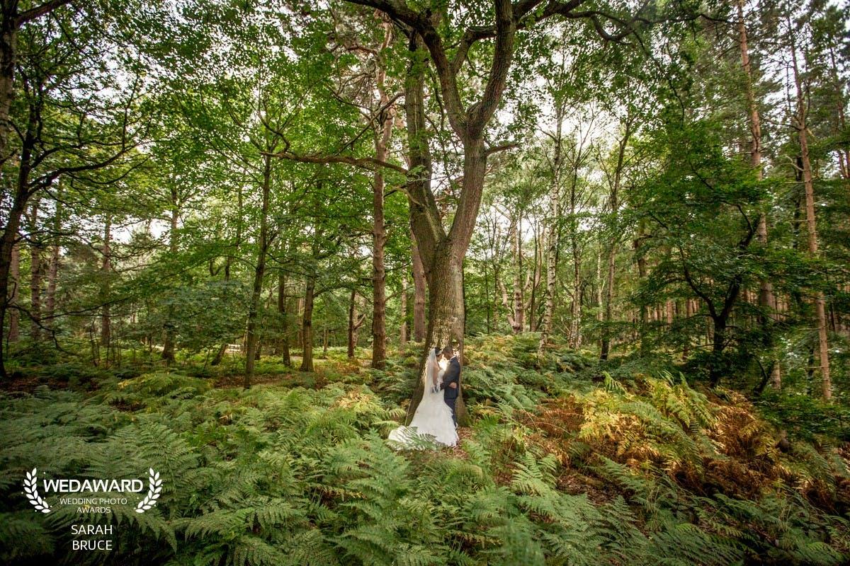 Cheshire Peckforton Castle Wedding Photographer